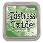 Encre Distress Oxide Mowed Lawn