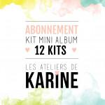Abonnement 12 kits