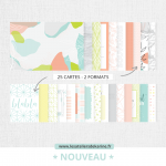 Raconte moi 25 cartes Project Life