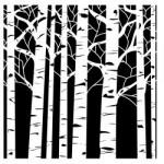 Pochoir Forêt de Bouleaux format 15x15cm