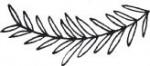 Tampon bois Outline Branch