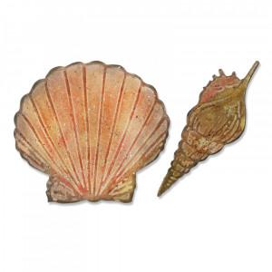 Sizzix Matrice de découpe + plaque embossage coquillages