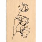 Tampon bois Florilèges Design Fleurs en bouton