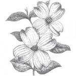 Tampon bois Duo de fleurs