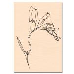 Entre les Lignes-Tampon bois fleur de Freesia