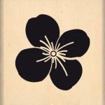 Tampon bois Florilèges Design Petite fleur de Mai