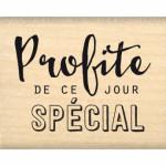 Tampon Bois Florilèges Design Profite de ce jour