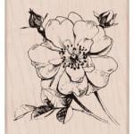 Tampon bois Rose Hero Arts