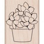 Tampon bois succulente 2