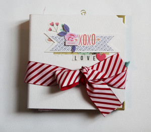 Tutoriel Mini Album La vie en Rose